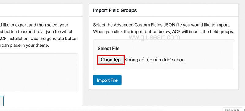 Import Filed Group Advanced Custom Field 2