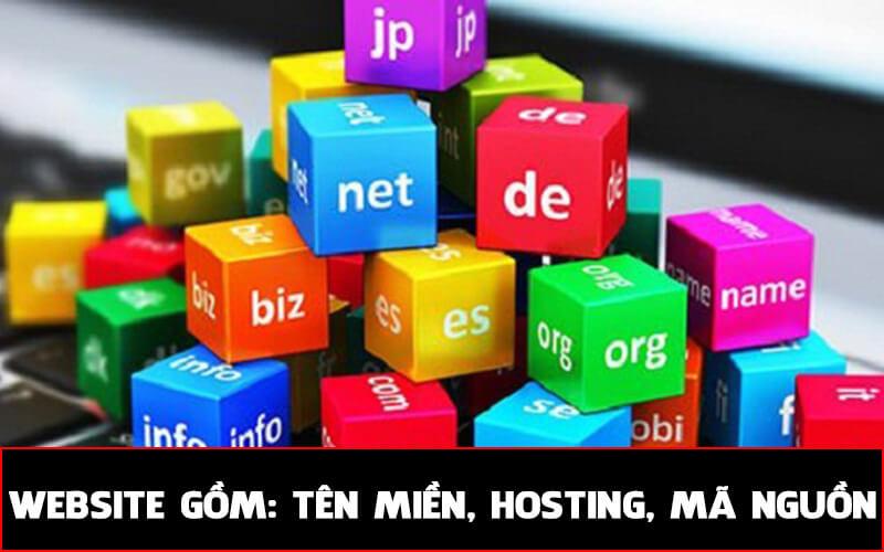 Website bao gồm tên miền, hosting, mã nguồn